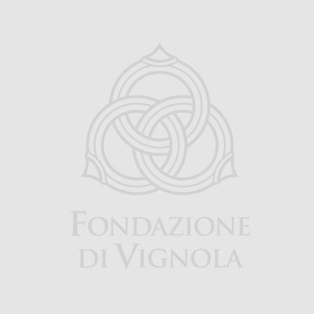 Valerio Massimo Manfredi Presidente della Fondazione